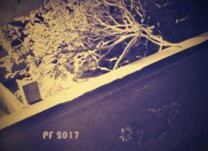 pf2017ii